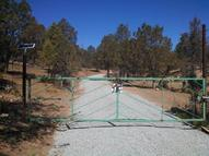 126 Stacey Rd Alto NM, 88312