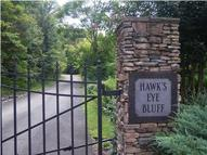 1000 Hawks Eye Bluff Hixson TN, 37343