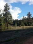 958 Macdonnell Loop Canon City CO, 81212
