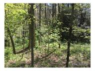 Lot 20 Fern Cove Lane Gerton NC, 28735