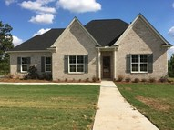 807 Twin Lakes Cove Oxford MS, 38655