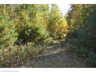 Map 2 Lot 30 Off Morrill Pond Rd Hartland ME, 04943