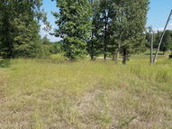 0 New Hope Road, Lot 19 Big Sandy TN, 38221