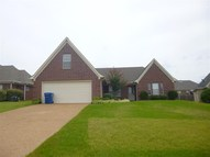 35 Willow Birch Cv Somerville TN, 38068