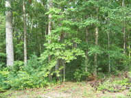 Lot 21 Pine Grove Estates Lerona WV, 25971