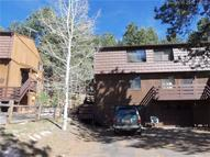 560 Manor Court A Woodland Park CO, 80863