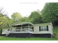 1622 Middle Horse Crk Road Julian WV, 25529