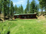 1486 Forest Road 92 Pecos NM, 87552