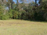 Lot 8 A Co Rd 679 Geneva AL, 36340