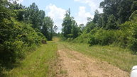 1045 Terry-Gatesville Road Crystal Springs MS, 39059