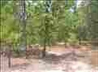 Lot 13 Country Lane Hartsville SC, 29550