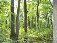 Lot 40 Sunset Dr Tomahawk WI, 54487