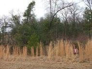 Lot 13 Shanleys Loop Ferrum VA, 24088
