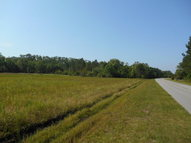 31.8 Ac Groover Road Hinesville GA, 31313
