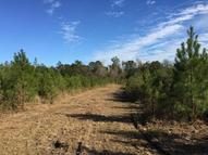 42.49 Acre Ollie Williams Rd. Hattiesburg MS, 39401