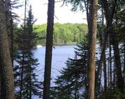 Lot 29 Secluded Point Rd Michigamme MI, 49861