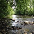 49 Acres Wears Valley Rd Townsend TN, 37882