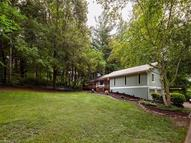 16 Chipping Green Drive Arden NC, 28704