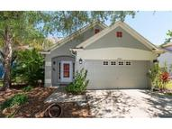 10912 Peppersong Drive Riverview FL, 33578