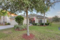 18220 Holland House Loop Land O Lakes FL, 34638
