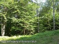 Lot #50 Mountain Road Mehoopany PA, 18629