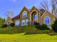 19 Mountain Shadows Drive Leicester NC, 28748