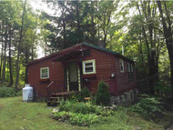 106 Hall Rd Chester VT, 05143