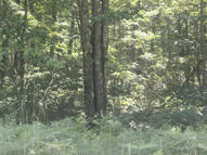 Lot 14, Bloss Acres Canadensis PA, 18325