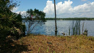 Lot 1 Lagrange Cove Circle Freeport FL, 32439