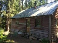 32830 E Mineral Creek Dr Government Camp OR, 97028