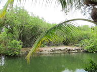 Lot 2 La Fitte Drive Cudjoe Key FL, 33042
