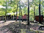 481 Switchback Lane Mena AR, 71953