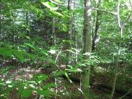 40.1 Acres Lower James Road- Parcel 2, Salisbury Center NY, 13454