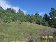 325 Willow Road Divide CO, 80814