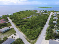 Lot 17 Basque Lane Cudjoe Key FL, 33042