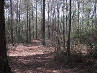 Lot 20 Lake Courtney Andalusia AL, 36421