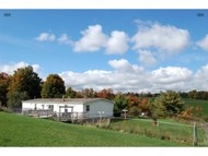 2454 Gee Hill Rd. Dryden NY, 13053