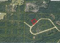 0000 Sandusky Circle Alford FL, 32420