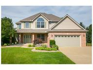1009 Wicklow Ct Grafton OH, 44044