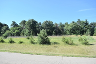 Lot 18 Liberty Woods Clarklake MI, 49234