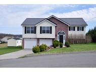1026 Mountain Meadows Drive Limestone TN, 37681