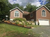 9 Lynes Rd Chester MA, 01011