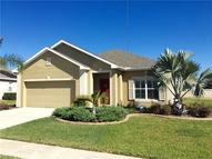 2355 Triggerfish Court Holiday FL, 34691