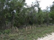 Tbd Se Tbd 20th Street Morriston FL, 32668