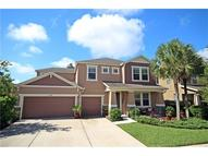 15608 Starling Water Drive Lithia FL, 33547