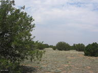 30 Acres Turkey Drive Sec. 9, T14n,R16e Heber AZ, 85928