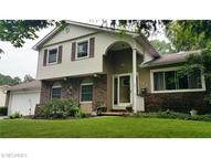 807 Valley Dr Amherst OH, 44001