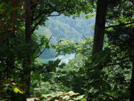 Lot 16 Sunset Pointe Allons TN, 38541
