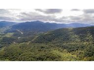 Tbd Lower Flat Creek Road 10,12,13,14 Black Mountain NC, 28711