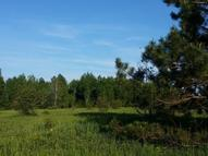 22 Acres Cth T Tomahawk WI, 54487